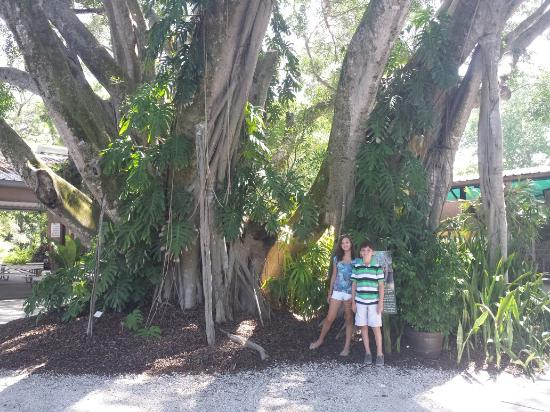 Naples Zoo at Caribbean Gardens: Great photo ops