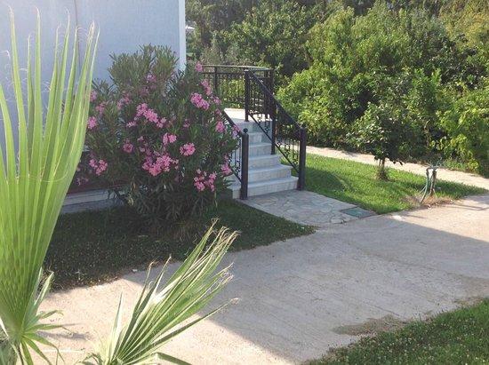 Kaloni Village Holiday Houses: Pretty gardens