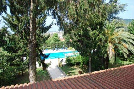 Hotel Delle Palme: Giardini e piscina