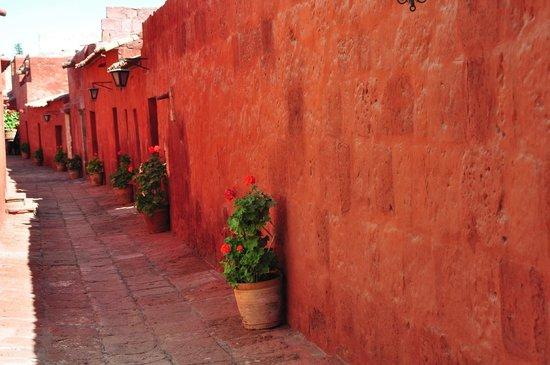 Monasterio de Santa Catalina: Calle interior del monasterio