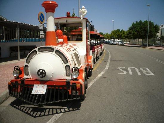 Bellamar Hotel: Tourist train excursion.