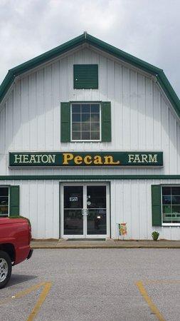 Heaton Pecan Farm