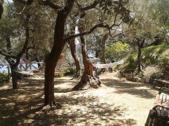 Hotel La Badia: hammocks in garden