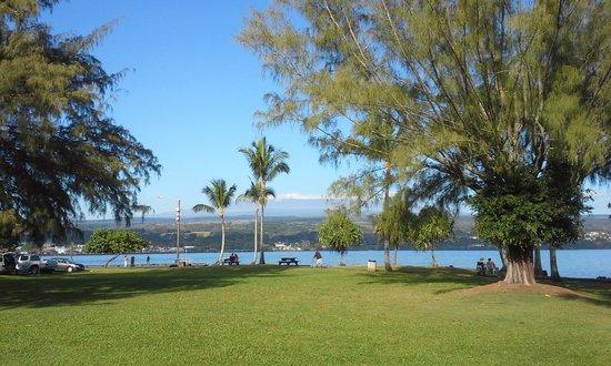 Hilo Tropical Gardens : Hilo