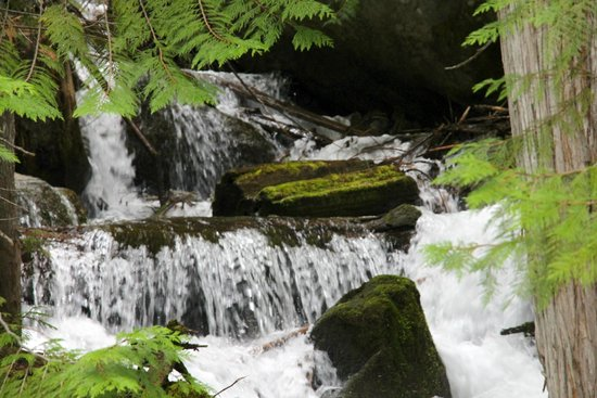 Wenatchee National Forest: Silver Falls at lower evel