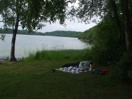 Farnham Estate Spa and Golf Resort: A relaxing picnic by the lake