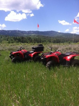 Alpine, WY: 2014 Yamaha Grizzly 450cc available for rentals