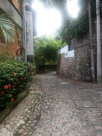 Quinta Maria Cortez: Calle Sagitario, the road where the inn is located
