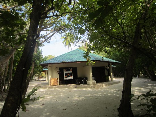 Embudu Village: Cottage