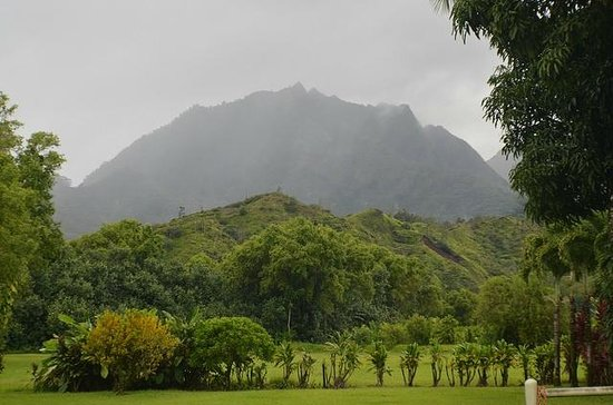 Hanalei Taro & Juice Company : View of local Mountain near Taro Stand