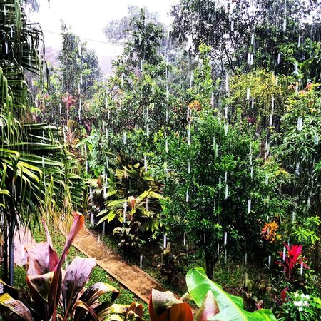 Eden Atenas : Beautiful view of the property on a rainy day from the Cabina