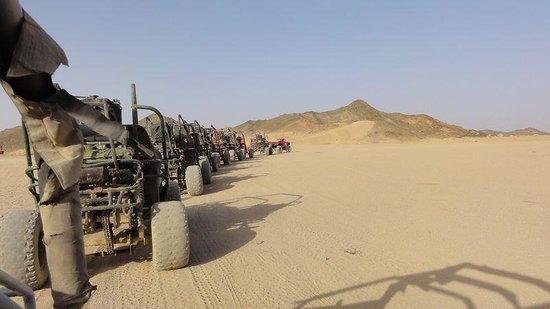 Eastern (Arabian) Desert : Spider buggys