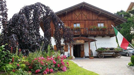 Pineta Naturamente Hotels: la reception