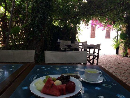 Lazer Pension: 庭は緑におおわれ外の暑さがうそのよう。