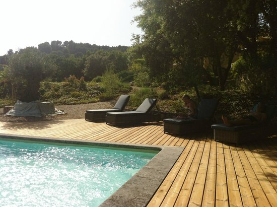 Le Mas du Loriot : Tranquillita' della piscina