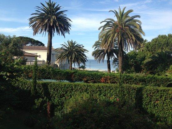 La Maison du Tamisier : Room with a view