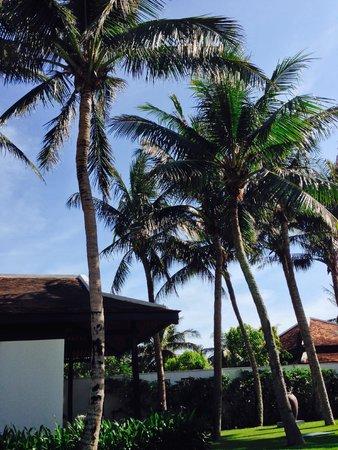The Nam Hai Hoi An : Pool Villa Yard