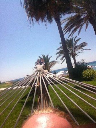 Constantinou Bros Pioneer Beach Hotel: view from the hammock