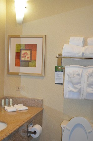 Comfort Suites Galveston: The bathroom