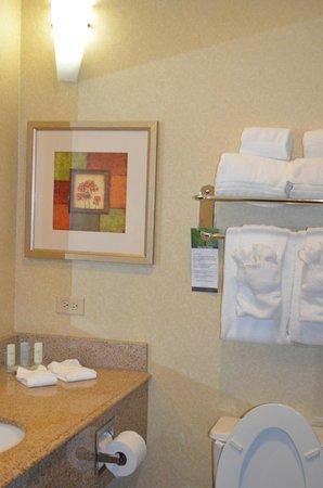 Comfort Suites Galveston: The bathroom