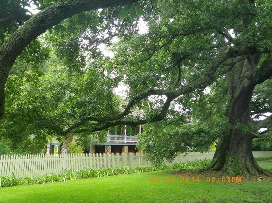 Laura: A Creole Plantation: View of the House