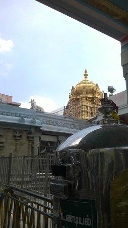 Palani Temple Gopuram View