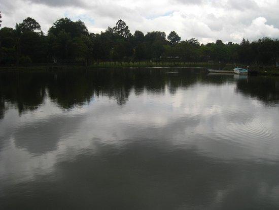 Nairobi Mamba Village : Lake inside Mamba Village