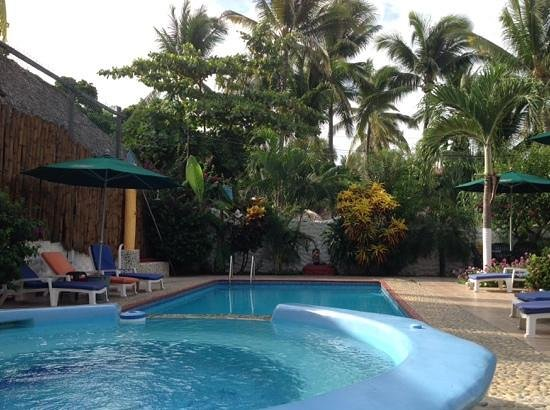 Hotelito Swiss Oasis : The pool was always sparkling clean. Definitely an oasis.