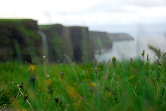 Doll's Cottage Bed & Breakfast : Cliffs of Moher