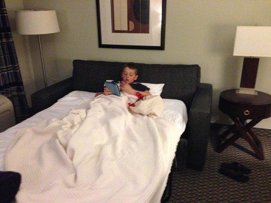 Hampton Inn & Suites Athens I-65 : Comfy sleeper sofa.