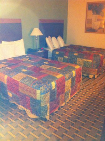 Days Inn Fayetteville-South/I-95 Exit 49: Standard double bed was comfy .