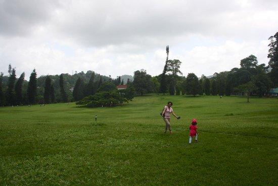 Royal Botanical Gardens: Botanical Garden