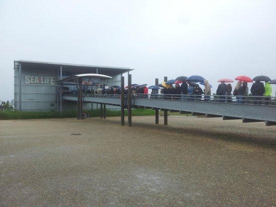 SEA LIFE Konstanz: Lange Warteschlange bei Schlechtwetter. Online-Ticket kaufen!