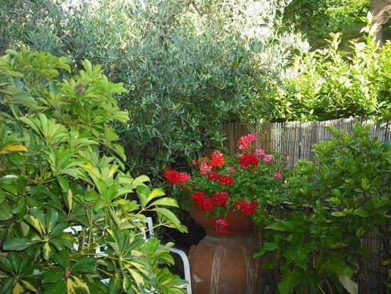 Primetta House: il giardino