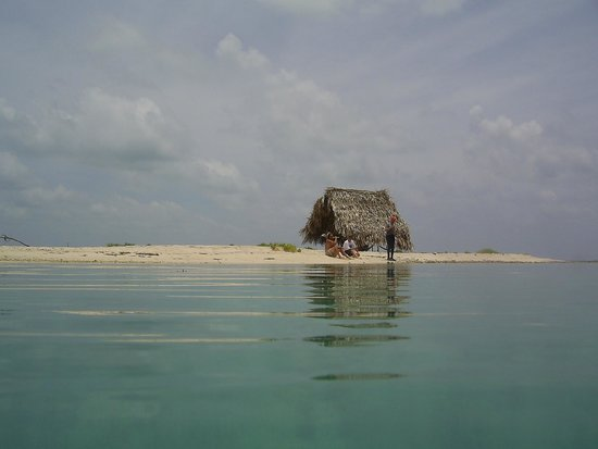 Glover's Reef Marine Reserve: Relaxing little hut on a little caye.