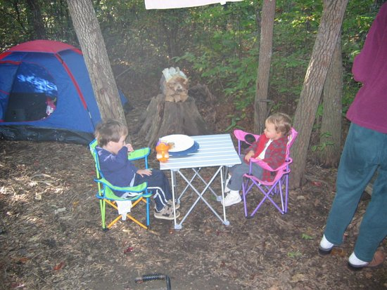 Ash Grove Mountain Cabins & Camping: Camping in the woods