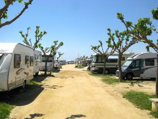 Camping Bon Repos : Stellplätze am Strandweg, linke direkt am Strand