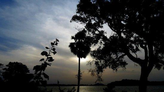 Heritance Kandalama: Near Kandalama Lake