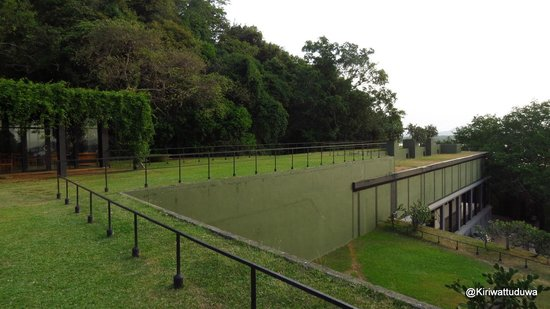 Heritance Kandalama: Terrace