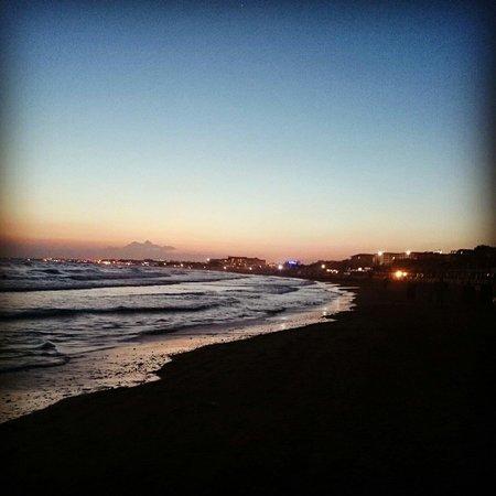 Trendy Palm Beach: Stranden på lvällen