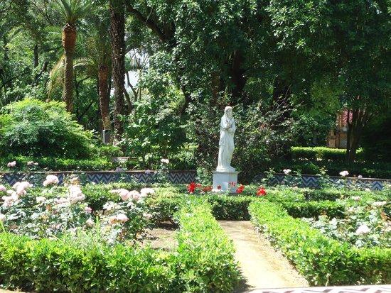 Parque de Maria Luisa: Rosedales rodeados de estatuas y otras flores.