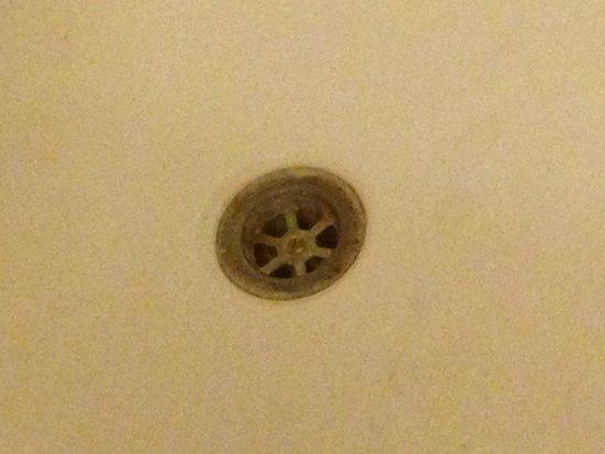 Europa Gatwick Hotel : Plug hole