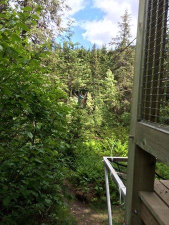 Hotel Alyeska: Alyeska hiking