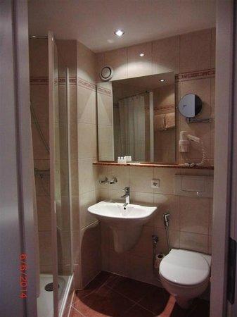 Central Hotel-Apart: baño