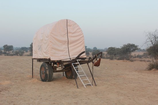 Marudyan Resort: Tent on a camel cart