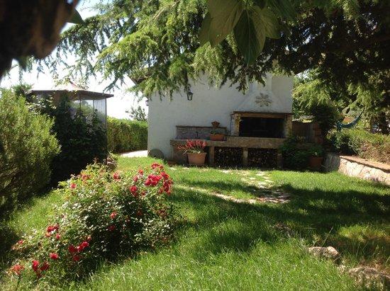Agriturismo Santa Caterina : barbecue