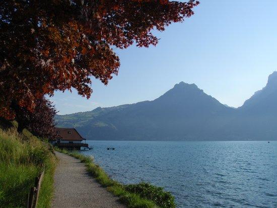 Strandhotel Seeblick: Wandelpad langs het meer.
