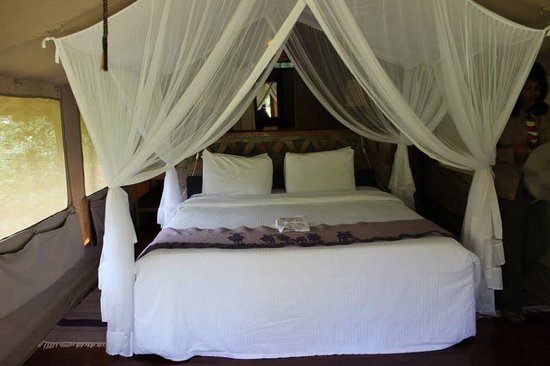 Sarova Mara Game Camp: Inside the room