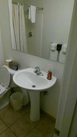 Colonial Motel: Bathroom was spotless.  Roomy shower as well.
