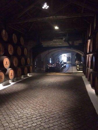Sandeman Cellars: Vista do passeio!!